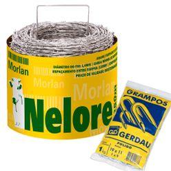 Kit-Arame-Farpado-Nelore-Morlan-250-Metros-com-Grampo-Gerdau-Polido-19x11-para-Cerca-2
