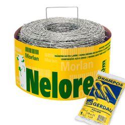 Kit-Arame-Farpado-Nelore-Morlan-500-Metros-com-Grampo-Gerdau-Polido-19x11-para-Cerca